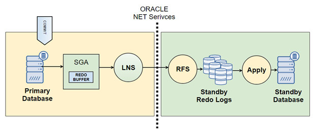 Oracle Data Guard Net Services