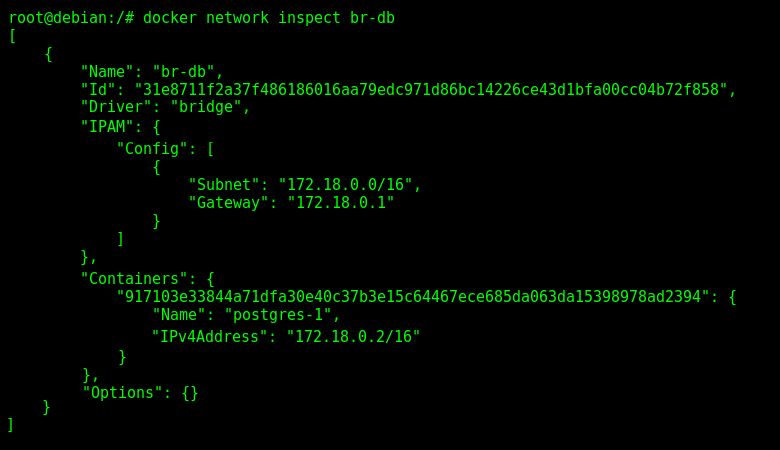 "Inspecting the Docker User-Defined Network Interface ""br-db""."