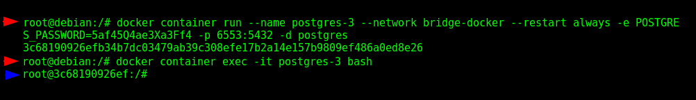 Running a temporary container to test the DNS provided by the User-Defined Bridge Network Interface.
