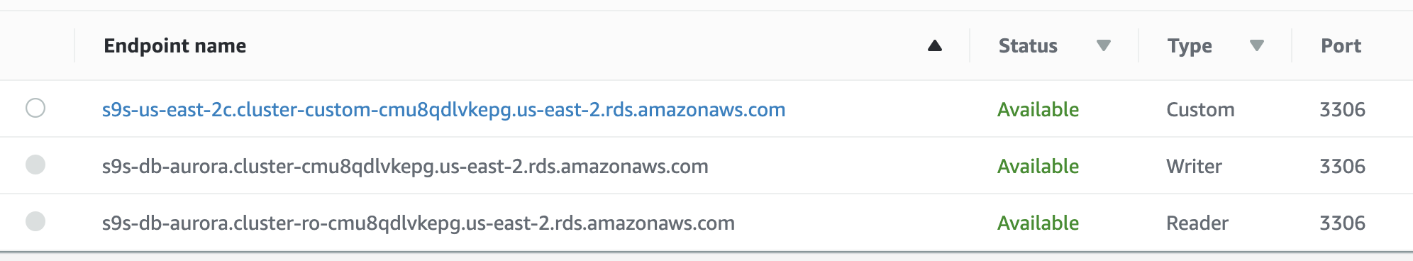 Amazon RDS Endpoint Name